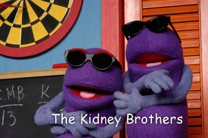 OrganWise Guy Kidney Brothers