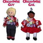 OrganWise Dolls with Beanies