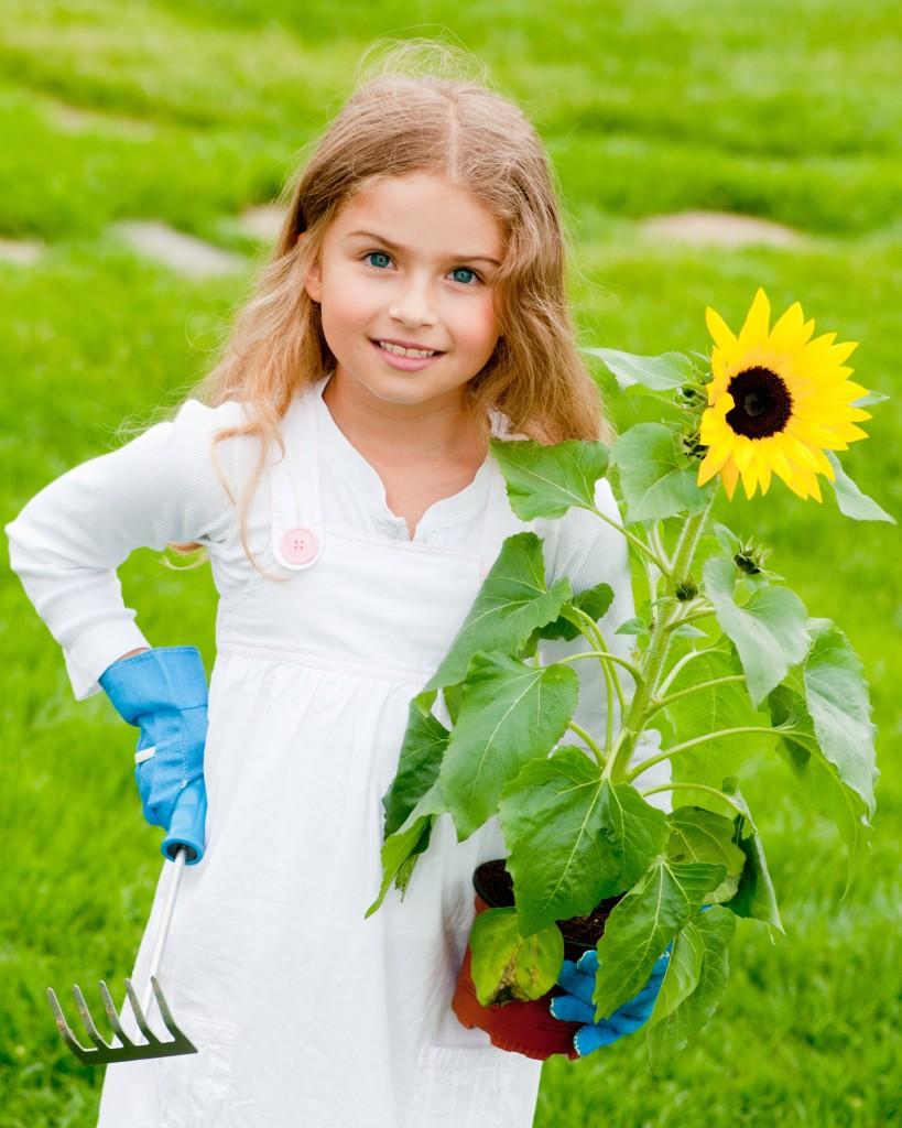 Gardening - lovely girl planting sunflower