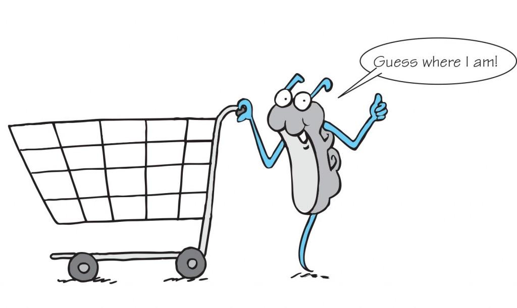 Sir Rebrum grocery shopping